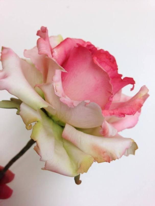 Bouquet de fleurs3